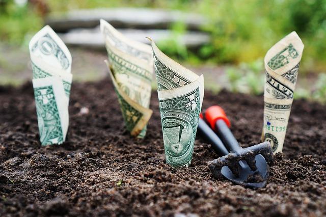 Doradztwo podatkowe pomysłem na biznes