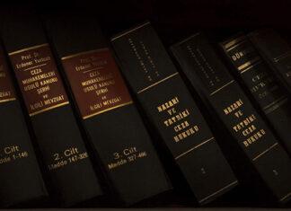 Zakres działań adwokata